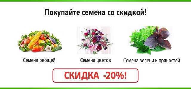 Семена овощей, зелени и цветов со скидкой
